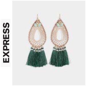 Express Long Tassel Earrings